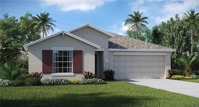 3302 Lytton Hall Drive, Zephyrhills, FL 33540 (MLS #T3194942) :: Armel Real Estate