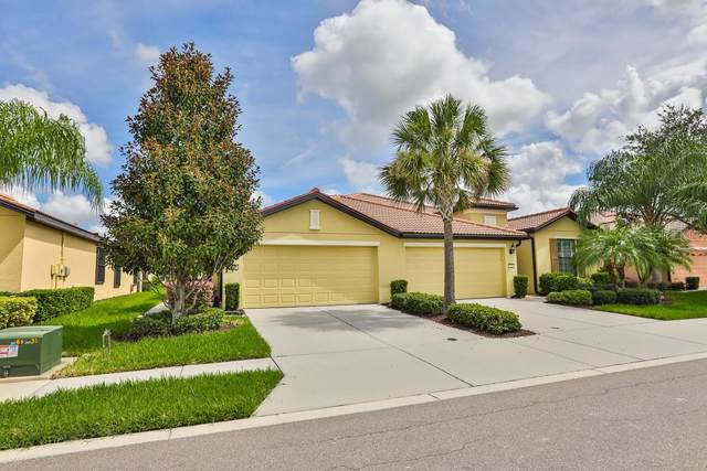 5648 Sunset Falls Drive, Apollo Beach, FL 33572 (MLS #T3194945) :: Griffin Group