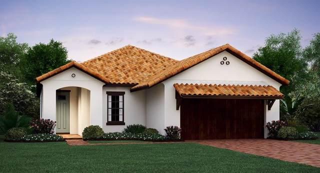 16754 Whisper Elm Street, Wimauma, FL 33598 (MLS #T3195022) :: Burwell Real Estate
