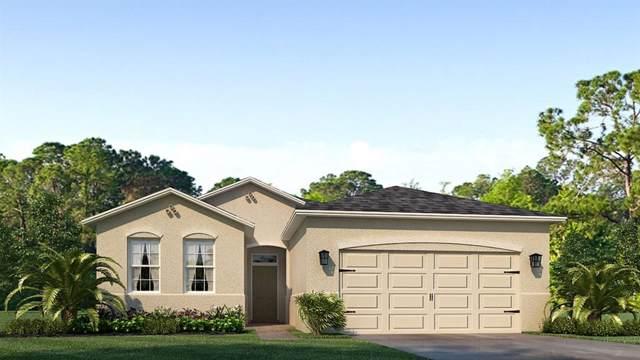 13316 Waterleaf Garden Circle, Riverview, FL 33579 (MLS #T3195092) :: The Duncan Duo Team
