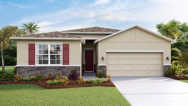 5139 Flowing Oar Road, Wimauma, FL 33598 (MLS #T3195105) :: Burwell Real Estate
