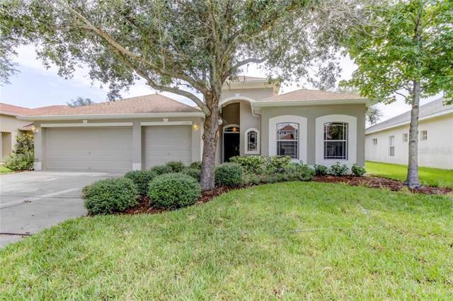 11245 Ragsdale Court, New Port Richey, FL 34654 (MLS #T3195212) :: The Duncan Duo Team