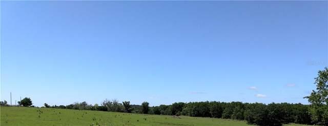 Blanton Road, Dade City, FL 33523 (MLS #T3195291) :: CENTURY 21 OneBlue