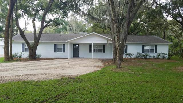 10216 George Smith Road, Lithia, FL 33547 (MLS #T3195331) :: Team Bohannon Keller Williams, Tampa Properties