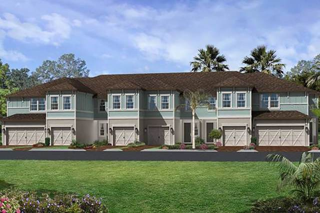 2468 Foggy Creek Circle, Clearwater, FL 33764 (MLS #T3195354) :: Dalton Wade Real Estate Group