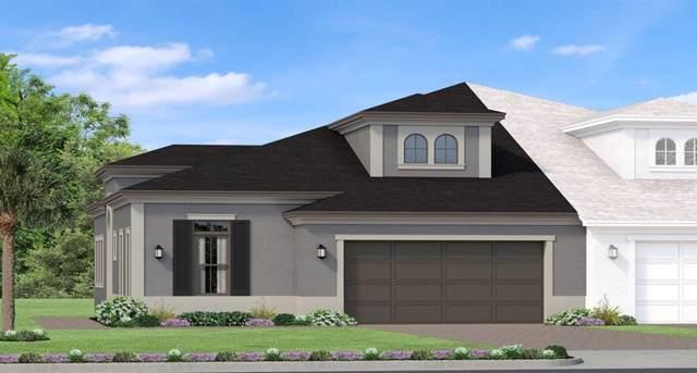 4235 Barletta Court, Wesley Chapel, FL 33543 (MLS #T3195474) :: Charles Rutenberg Realty