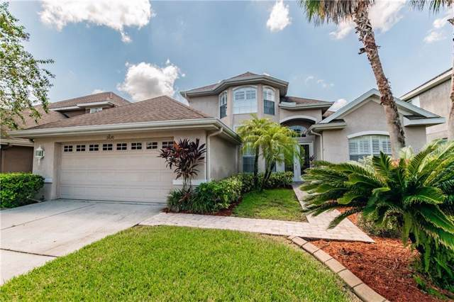 11630 Renaissance View Court, Tampa, FL 33626 (MLS #T3195530) :: Team 54