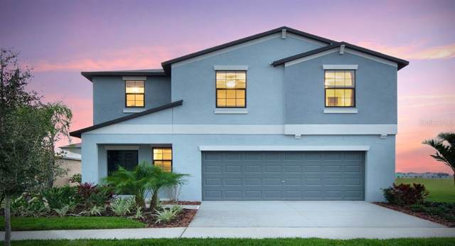 7201 Ozello Trail Avenue, Sun City Center, FL 33573 (MLS #T3195729) :: Ideal Florida Real Estate