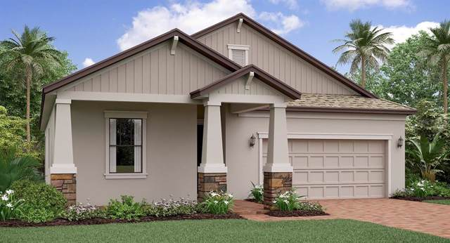 7321 Wash Island Drive, Ruskin, FL 33573 (MLS #T3195756) :: Ideal Florida Real Estate