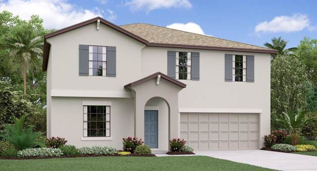 11828 Miracle Mile Drive, Riverview, FL 33578 (MLS #T3195786) :: EXIT King Realty