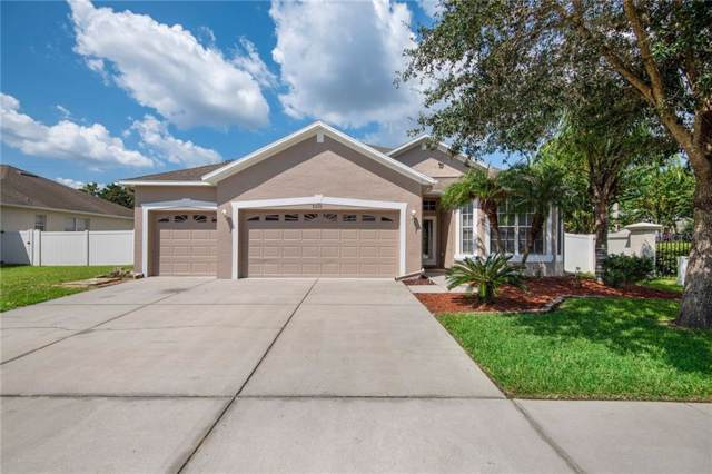 31223 Anniston Drive, Wesley Chapel, FL 33543 (MLS #T3196033) :: Baird Realty Group