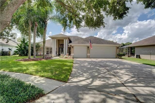 16601 Blenheim Drive, Lutz, FL 33549 (MLS #T3196107) :: Griffin Group