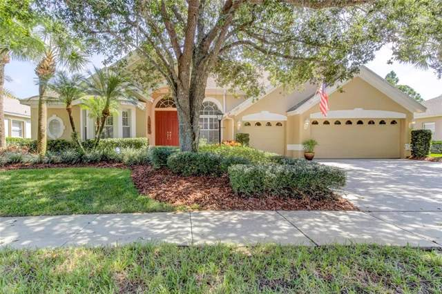 10404 Greenhedges Drive, Tampa, FL 33626 (MLS #T3196167) :: GO Realty