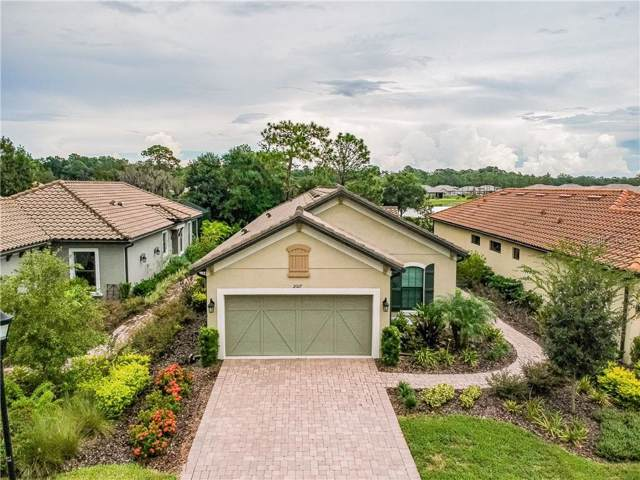 20117 Sorano Hill Place, Tampa, FL 33647 (MLS #T3196363) :: Cartwright Realty