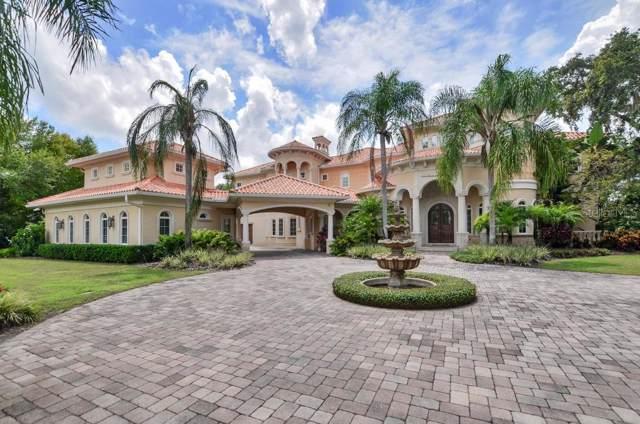 16218 Sierra De Avila Drive, Tampa, FL 33613 (MLS #T3196435) :: Rabell Realty Group