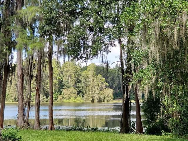 1101 Lake Charles Circle, Lutz, FL 33548 (MLS #T3196545) :: The Duncan Duo Team