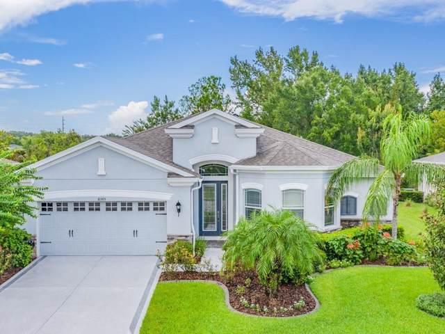 10365 Belmullet Drive, San Antonio, FL 33576 (MLS #T3196557) :: Delgado Home Team at Keller Williams