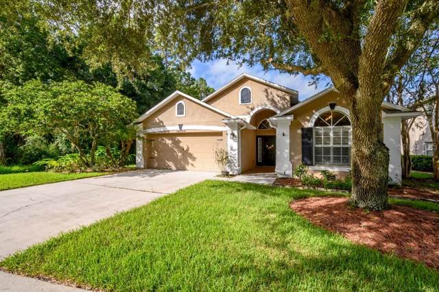 14440 Pepperpine Drive, Tampa, FL 33626 (MLS #T3196626) :: Griffin Group