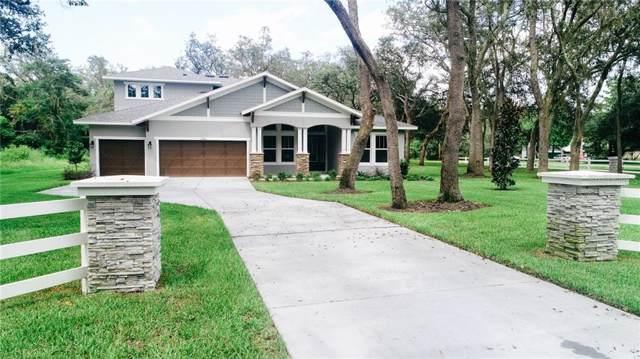 2420 Clement Road, Lutz, FL 33549 (MLS #T3196631) :: Griffin Group