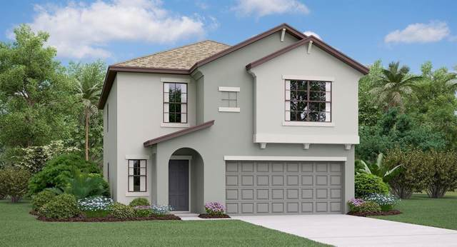 7228 Salt River Avenue, Sun City Center, FL 33573 (MLS #T3196642) :: Ideal Florida Real Estate