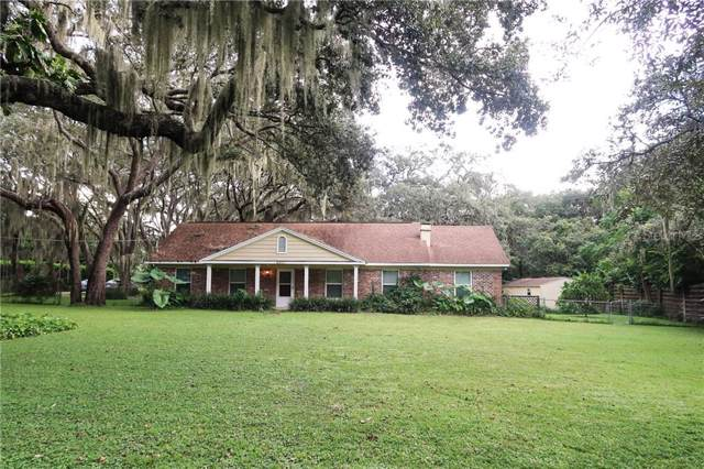 4307 Culbreath Road, Valrico, FL 33596 (MLS #T3196753) :: Griffin Group