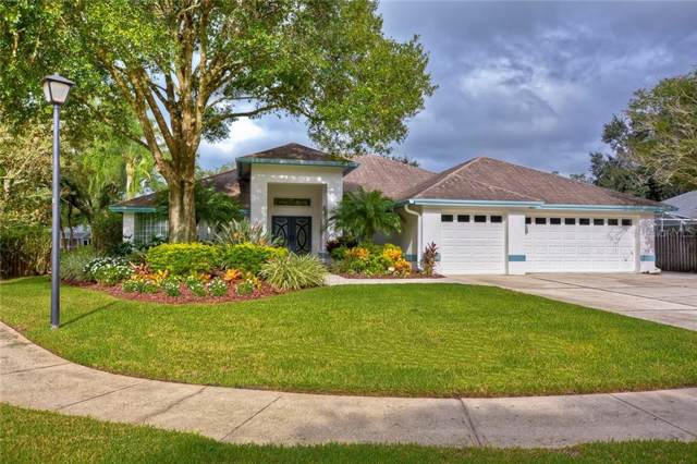 16825 Blenheim Drive, Lutz, FL 33549 (MLS #T3196761) :: Griffin Group