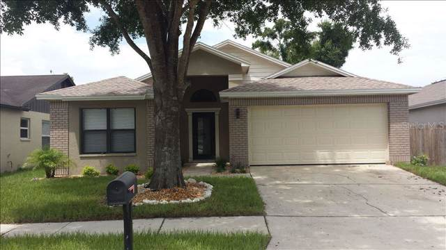 10827 Peppersong Drive, Riverview, FL 33578 (MLS #T3196825) :: Ideal Florida Real Estate