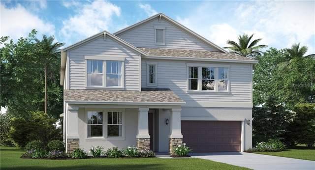 9608 Ivory Drive, Ruskin, FL 33573 (MLS #T3196833) :: Team Pepka