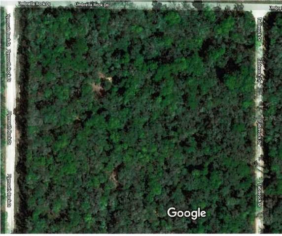 Table Rock Drive, Webster, FL 33597 (MLS #T3196850) :: CENTURY 21 OneBlue