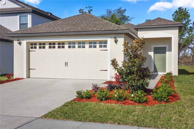2491 Caspian Drive, Lakeland, FL 33805 (MLS #T3196891) :: Delgado Home Team at Keller Williams