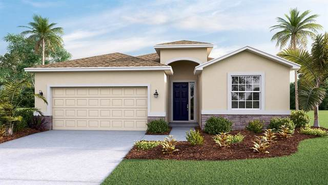 32876 Sand Creek Drive, Wesley Chapel, FL 33543 (MLS #T3197019) :: Burwell Real Estate