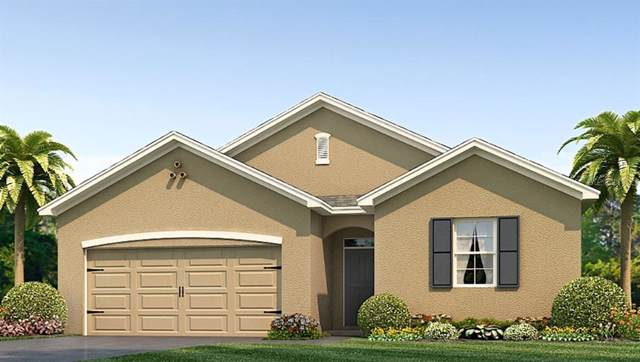 30587 Summer Sun Loop, Wesley Chapel, FL 33545 (MLS #T3197111) :: Burwell Real Estate