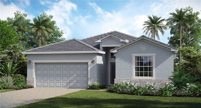 17327 Blue Ridge Place, Bradenton, FL 34211 (MLS #T3197139) :: Medway Realty