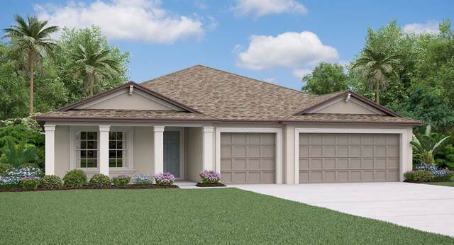 10863 Sage Canyon Drive, Riverview, FL 33578 (MLS #T3197210) :: The Duncan Duo Team