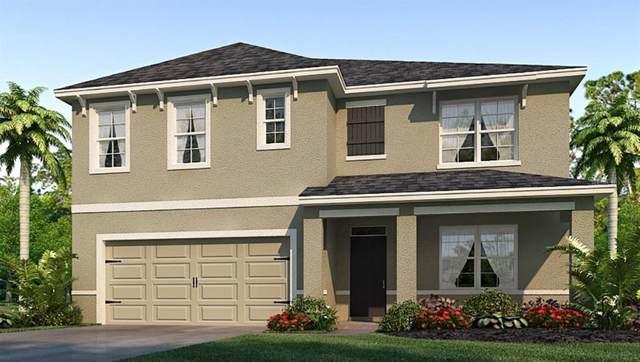 36017 Jenny Lynne Circle, Zephyrhills, FL 33541 (MLS #T3197247) :: Florida Real Estate Sellers at Keller Williams Realty