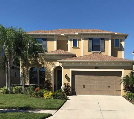 4097 Canino Court, Wesley Chapel, FL 33543 (MLS #T3197287) :: Griffin Group