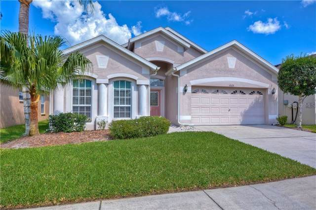 4518 Havelocke Drive, Land O Lakes, FL 34638 (MLS #T3197304) :: Baird Realty Group