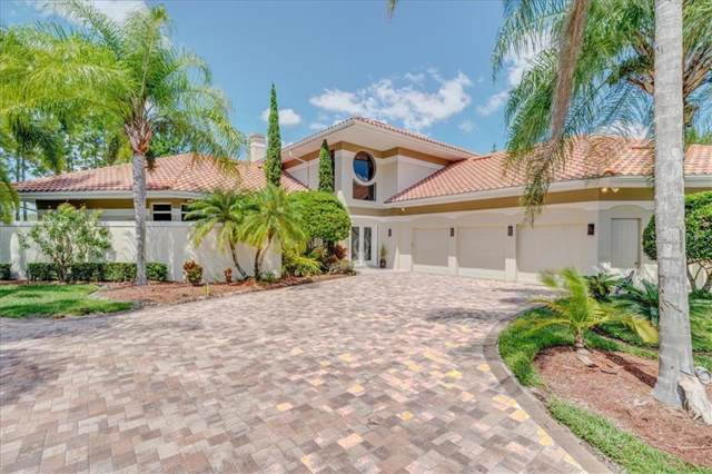 19004 Cour Estates, Lutz, FL 33558 (MLS #T3197480) :: Team Borham at Keller Williams Realty