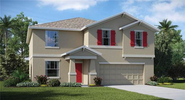10108 Paradise Fish Drive, Riverview, FL 33578 (MLS #T3197556) :: The Duncan Duo Team