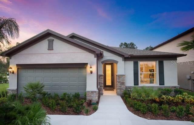6300 Dutton Drive, Wesley Chapel, FL 33545 (MLS #T3197613) :: Griffin Group