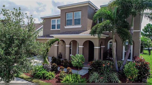 6715 Park Strand Drive, Apollo Beach, FL 33572 (MLS #T3197627) :: Griffin Group