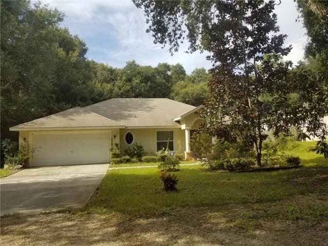 245 Birch Avenue, Orange City, FL 32763 (MLS #T3197689) :: Griffin Group