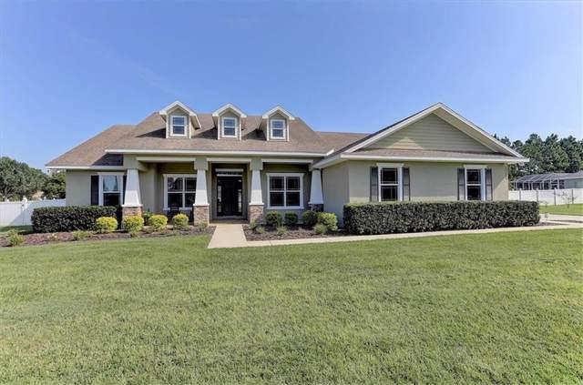 13204 Jaudon Ranch Road, Dover, FL 33527 (MLS #T3197709) :: Team Borham at Keller Williams Realty