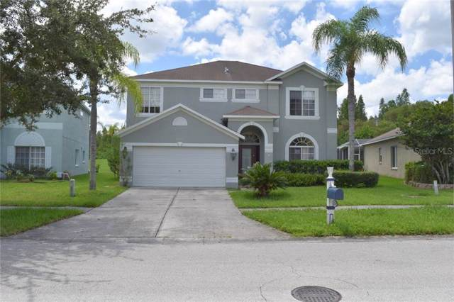 4230 Harbor Lake Drive, Lutz, FL 33558 (MLS #T3197808) :: Baird Realty Group