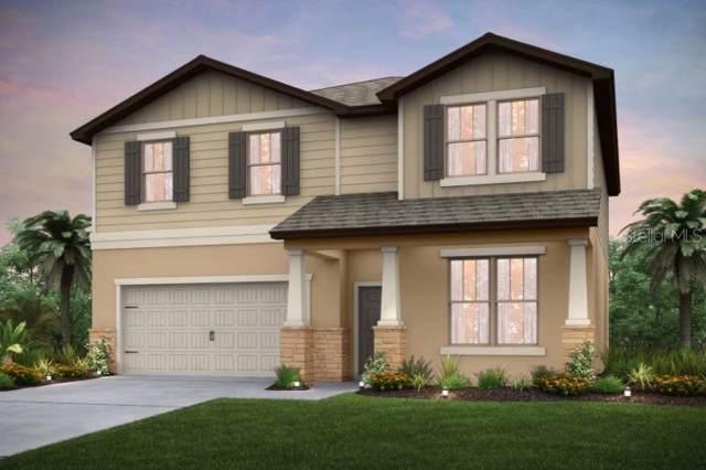 6228 Dutton Drive, Wesley Chapel, FL 33545 (MLS #T3197836) :: Griffin Group
