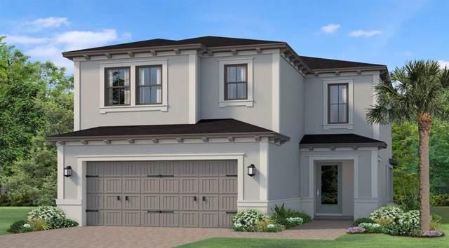 4818 Tramanto Lane, Wesley Chapel, FL 33543 (MLS #T3197880) :: Baird Realty Group