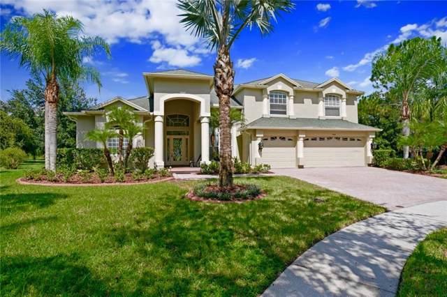 5004 Kepfer Way, Tampa, FL 33647 (MLS #T3197881) :: Team Bohannon Keller Williams, Tampa Properties