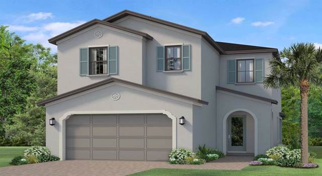 4790 Tramanto Lane, Wesley Chapel, FL 33543 (MLS #T3197883) :: Charles Rutenberg Realty