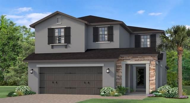 4834 Tramanto Lane, Wesley Chapel, FL 33543 (MLS #T3197889) :: Baird Realty Group
