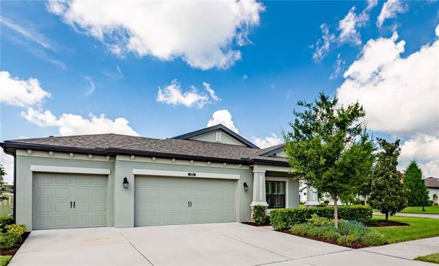 8323 Bluevine Sky Drive, Land O Lakes, FL 34637 (MLS #T3197907) :: Homepride Realty Services